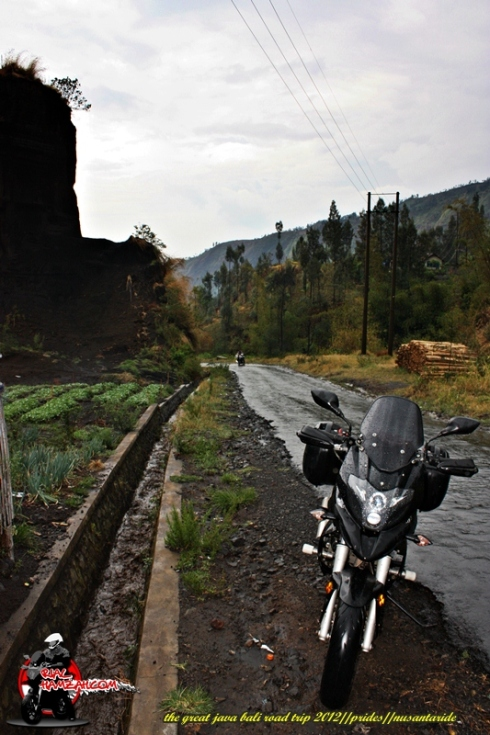 pulsar multistrada road to bromo